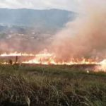 San Martín: Incendio consume más de 15 hectáreas de bosques en cerro San Mateo de Moyobamba