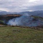 Extinguido un incendio forestal en Bimenes