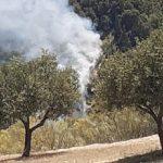 Estabilizado el fuego en un paraje del entorno del río Darro